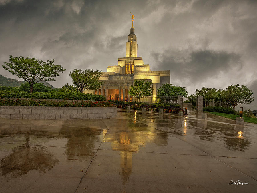 Weathering Storms Photograph