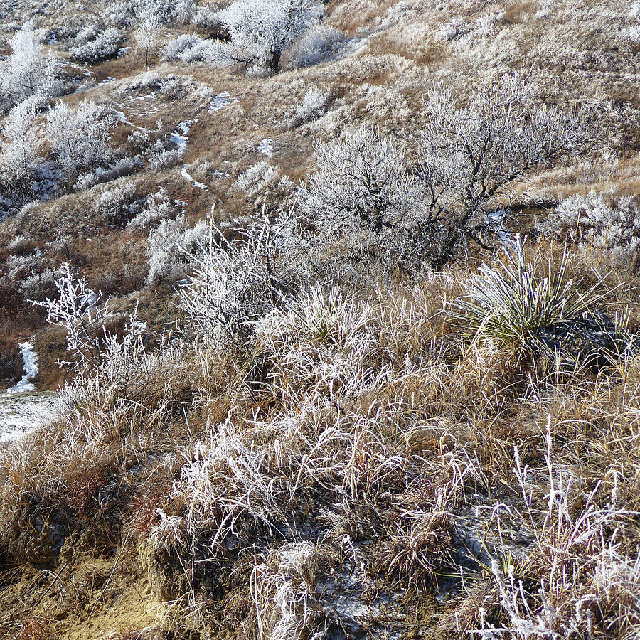 North Dakota Photograph - West Dakota Winter Hills by Cris Fulton