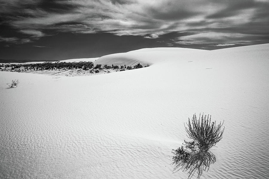 White Sands Photograph - White Sands by Candy Brenton