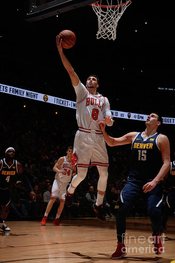 Zach Lavine Photograph by Bart Young