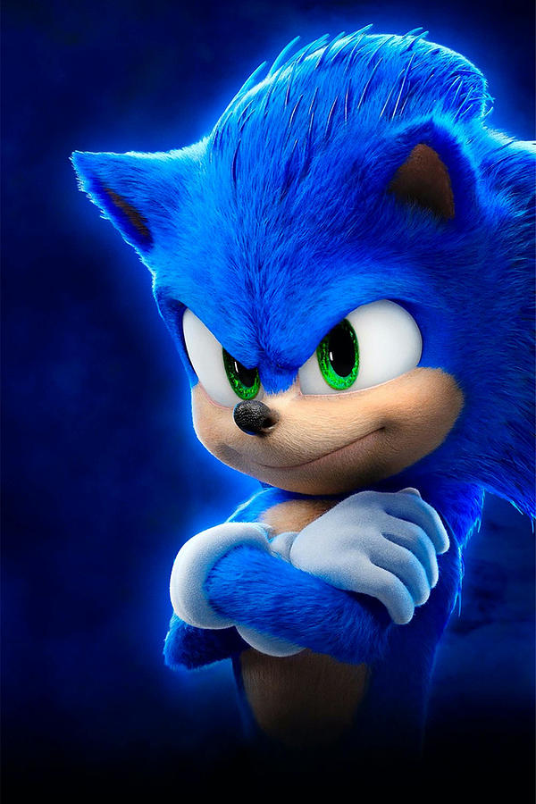 sonic the hedgehog movie poster landscape