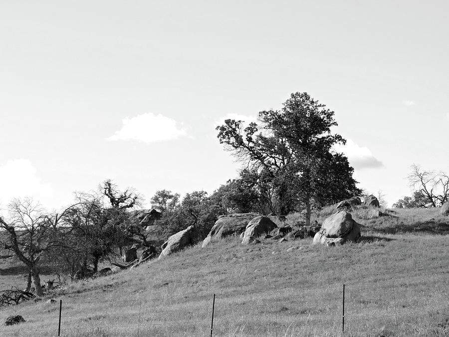 168 Hillside Photograph