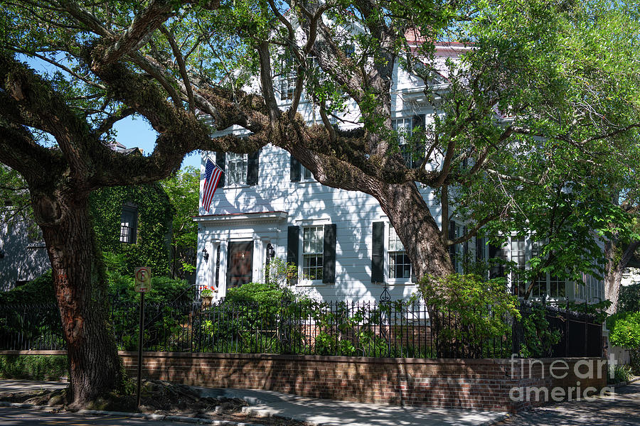 Southern Charleston Mansions Photograph
