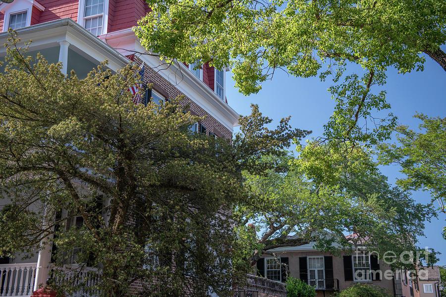 Spring Over Charleston South Carolina Photograph