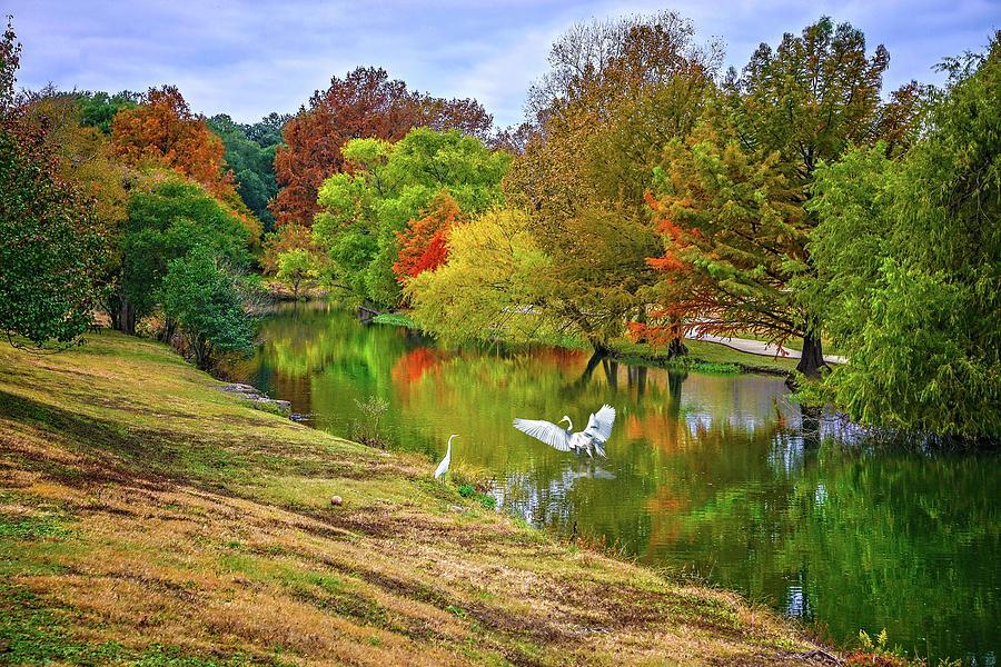 A Fabulous Fall Along Cibolo Creek 2 by Lynn Bauer
