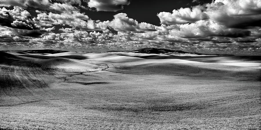 A Palouse Panorama by David Patterson