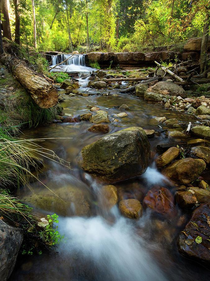 Autumn Cascade by Sue Cullumber