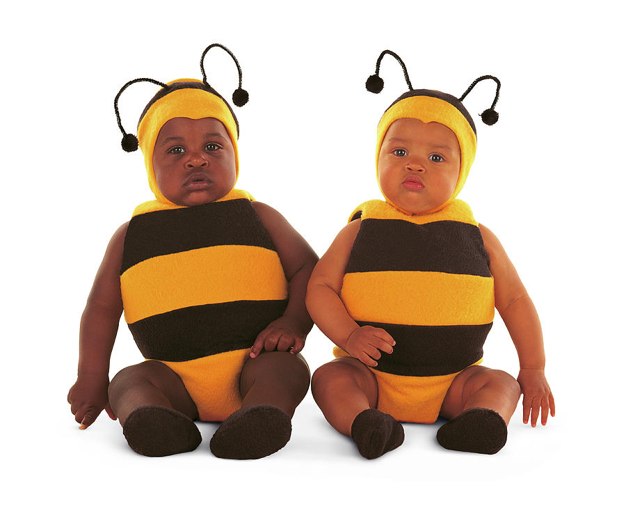 Yellow Photograph - 2 Bumblebees by Anne Geddes