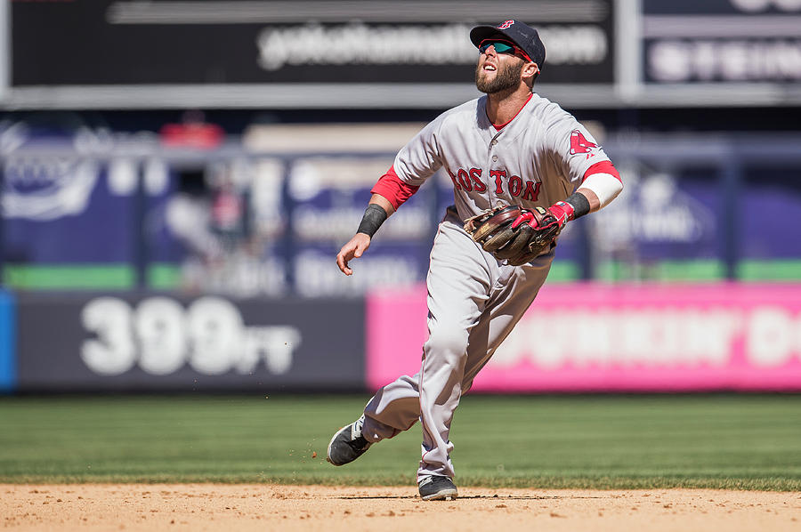 Dustin Pedroia Photograph by Rob Tringali
