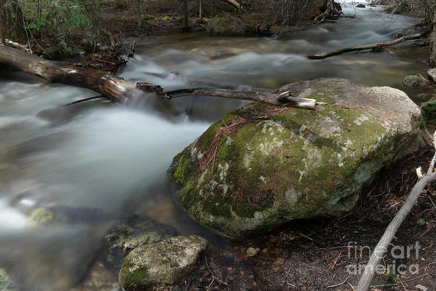 Easy Water Photograph