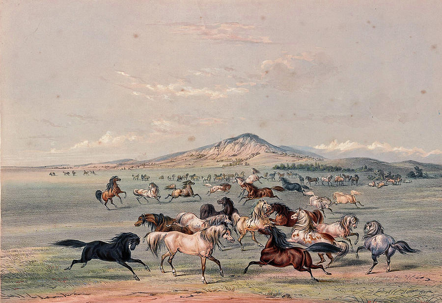 George Catlin 1796 1872 Catlin S North American Indian Portfolio Hunting Scenes And Amusements Of Th Painting