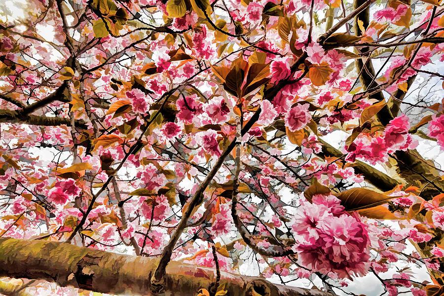 Impressionist Cherry Blossoms Photograph