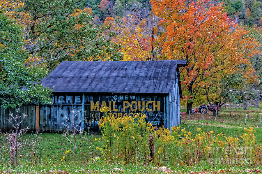 Mail Pouch Tobacco Barn  by Kathleen K Parker