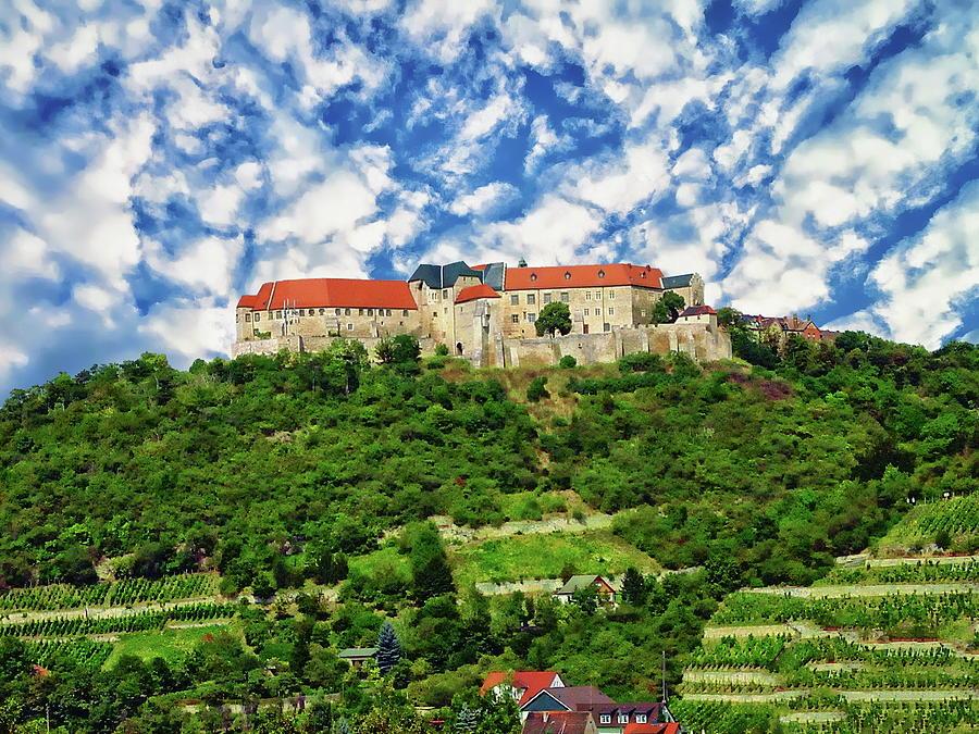 Neuenburg Castle Photograph