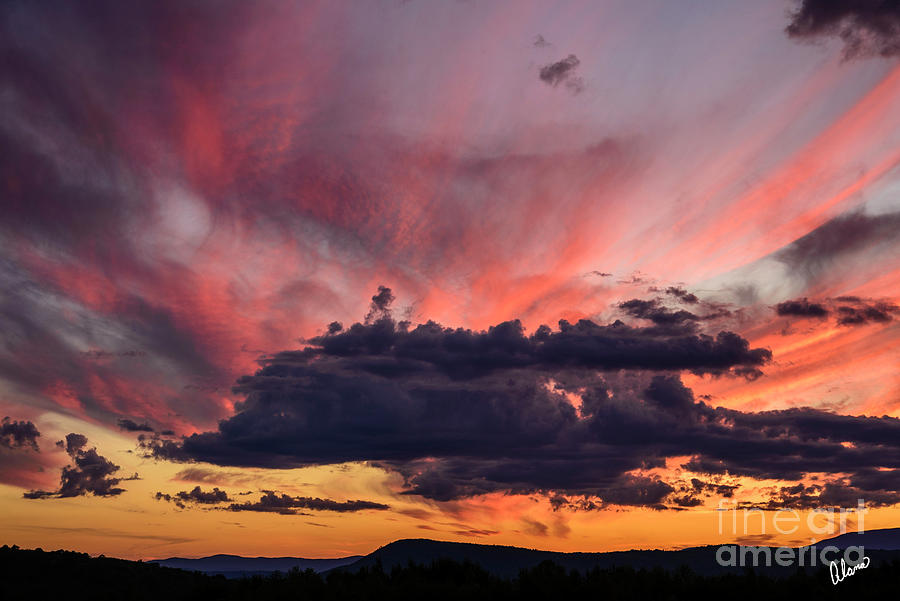 Pink Clouds Photograph