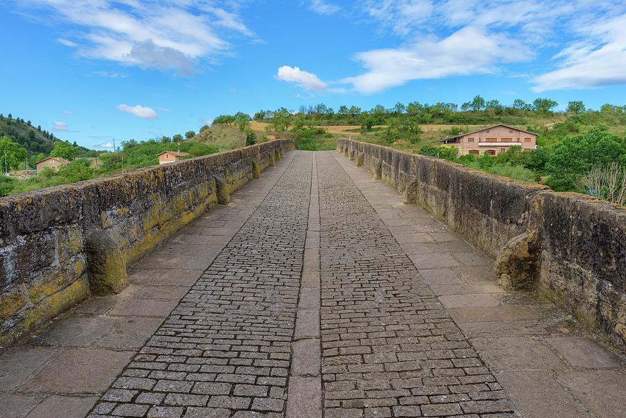 Puente La Reina On The Road To Santiago Photograph