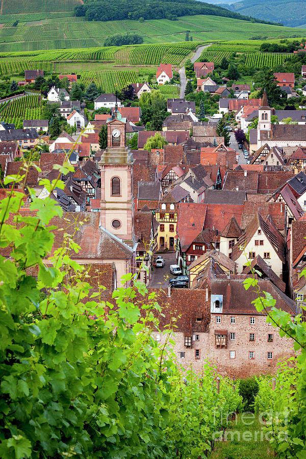 Riquewihr - Alsace France Photograph