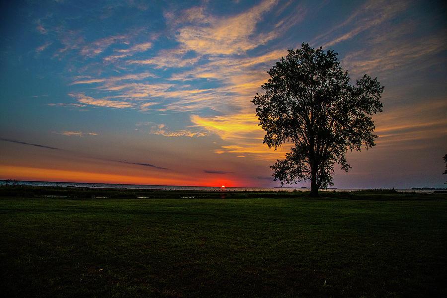 Lake Huron Photograph - Sunrise over Lake Huron with lone tree by Eldon McGraw