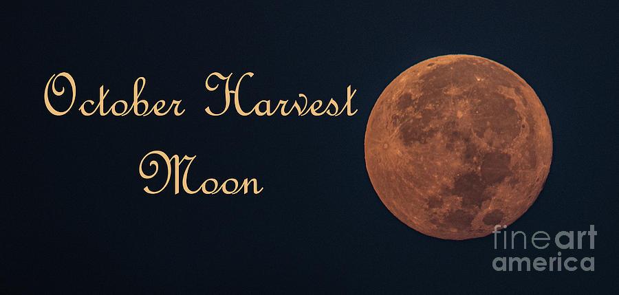 2020 October Harvest Moon Photograph