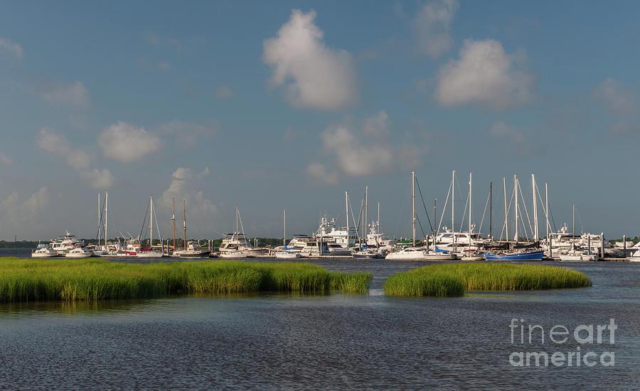 City Marina - Charleston South Carolina - Salt Life Photograph
