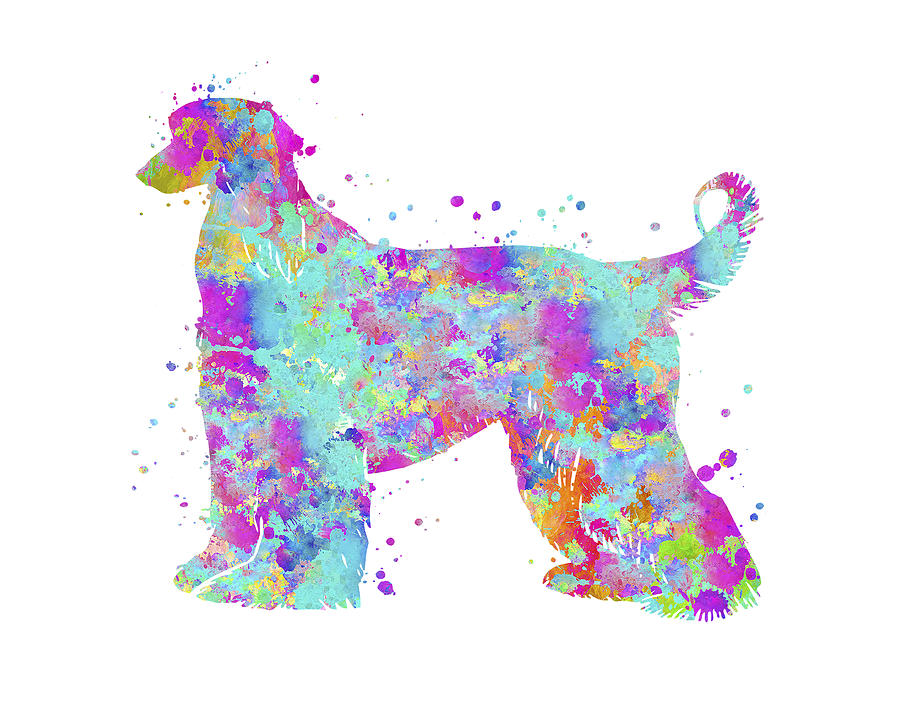 Afghan Hound Painting - Afghan Hound by Zuzi s