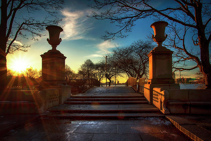 Charles River Esplanade - Boston by Joann Vitali