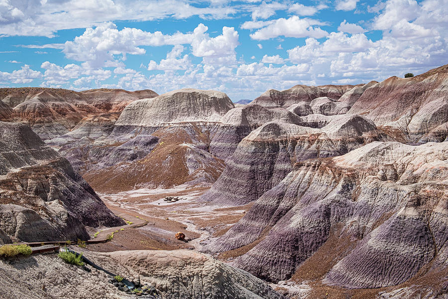Scenic valley along the Blue Mesa Trail - Petrified Forest National Park  Photograph by Jeffrey Ross