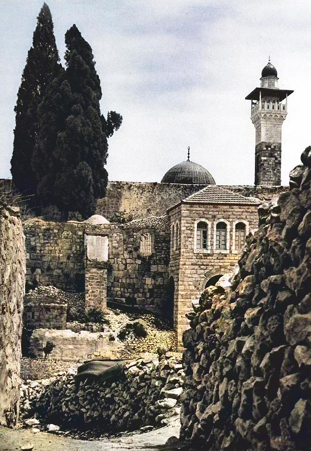 Picturesque Palestine Painting
