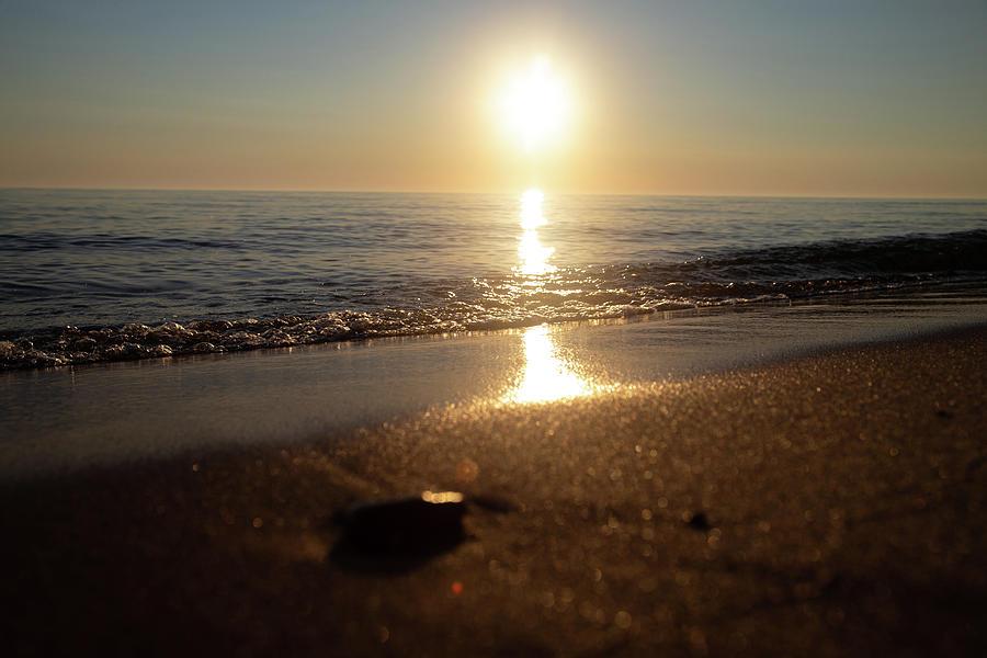 Sun Photograph - Small rock at sunset on Lake Michigan by Eldon McGraw