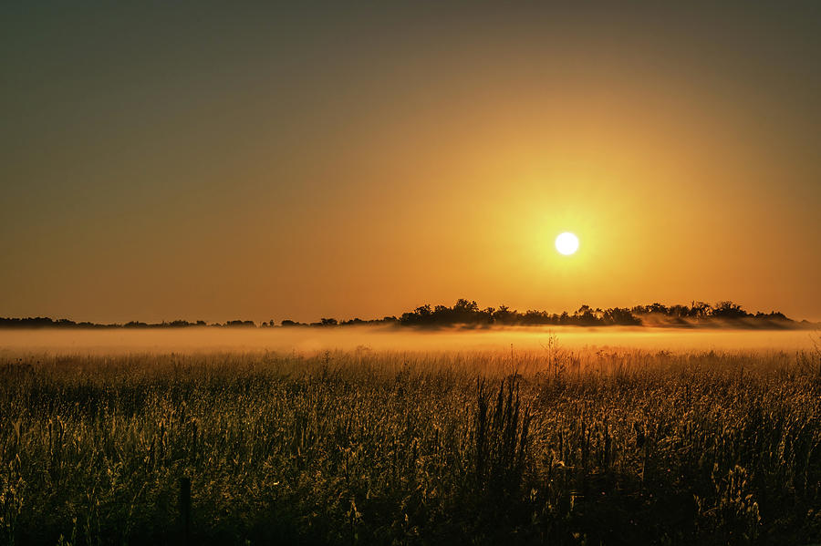 Beauty Photograph - Sunrise Over a Fog-Covered Field by Ric Schafer