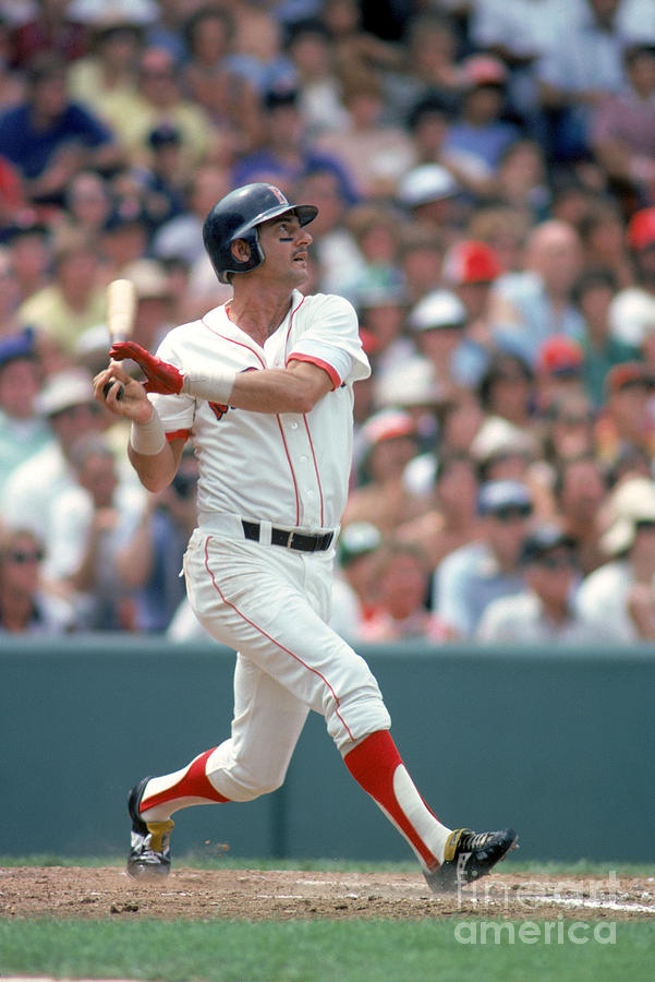 Carl Yastrzemski Photograph by Rich Pilling