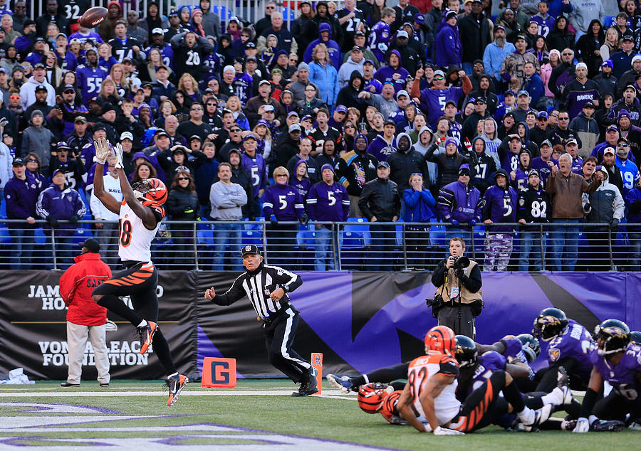 Cincinnati Bengals v Baltimore Ravens Photograph by Rob Carr