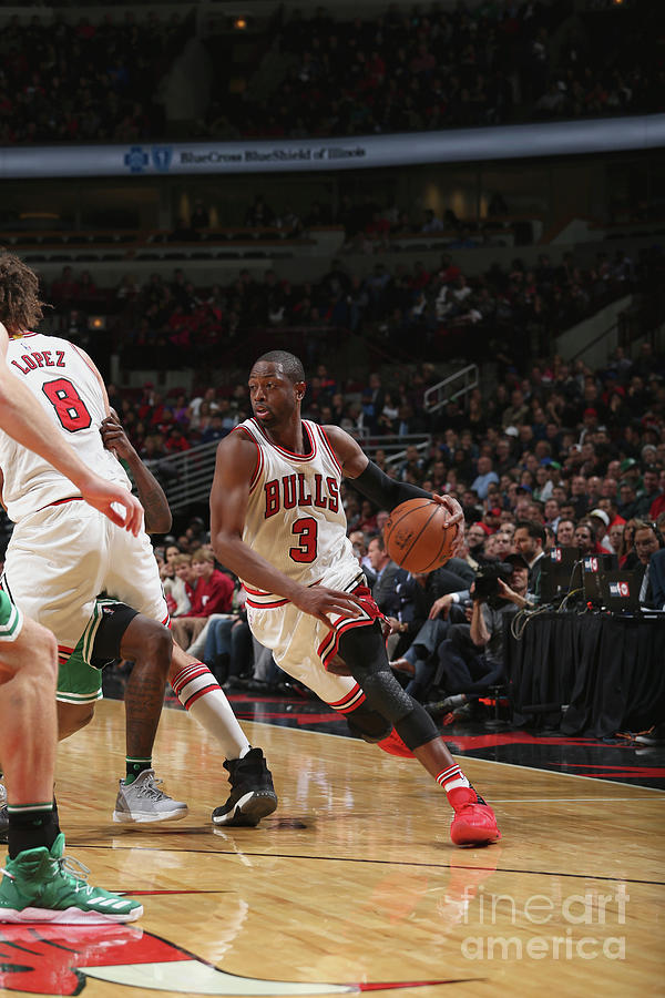 Dwyane Wade Photograph by Gary Dineen