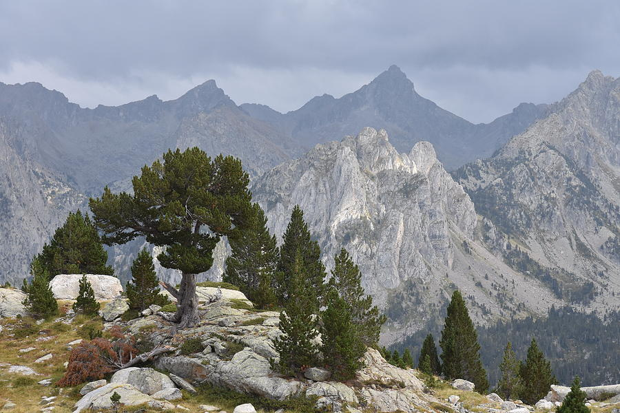 Spanish Pyrenees by Ben Foster