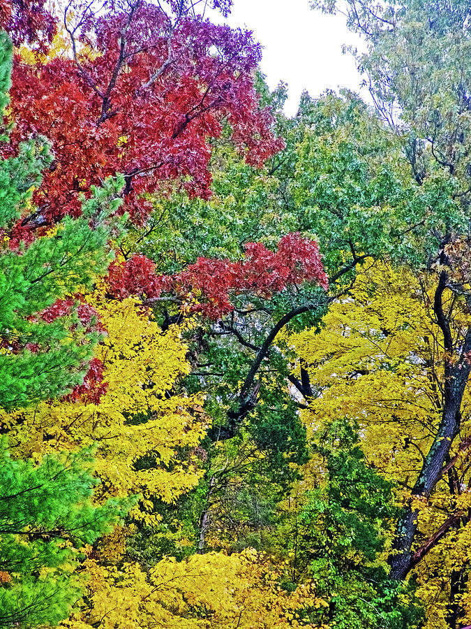 54 Autumn in Thornapple River Area in Grand Rapids, Michigan  by Ruth Hager