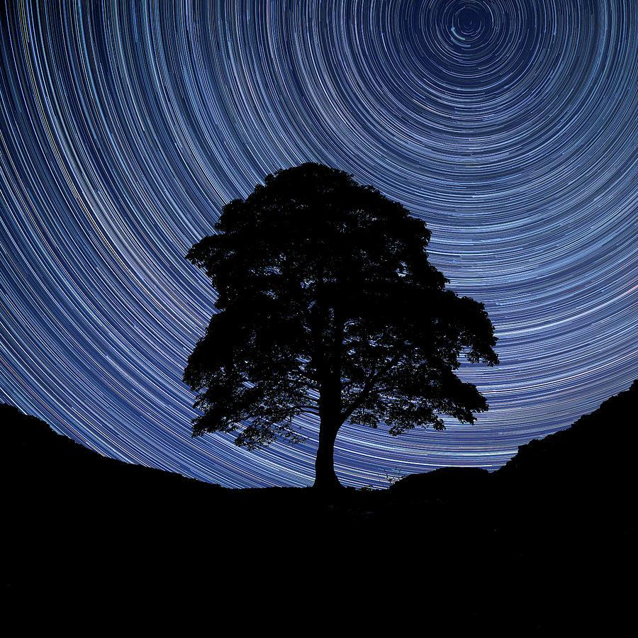 Digital Composite Image Of Star Trails Around Polaris With