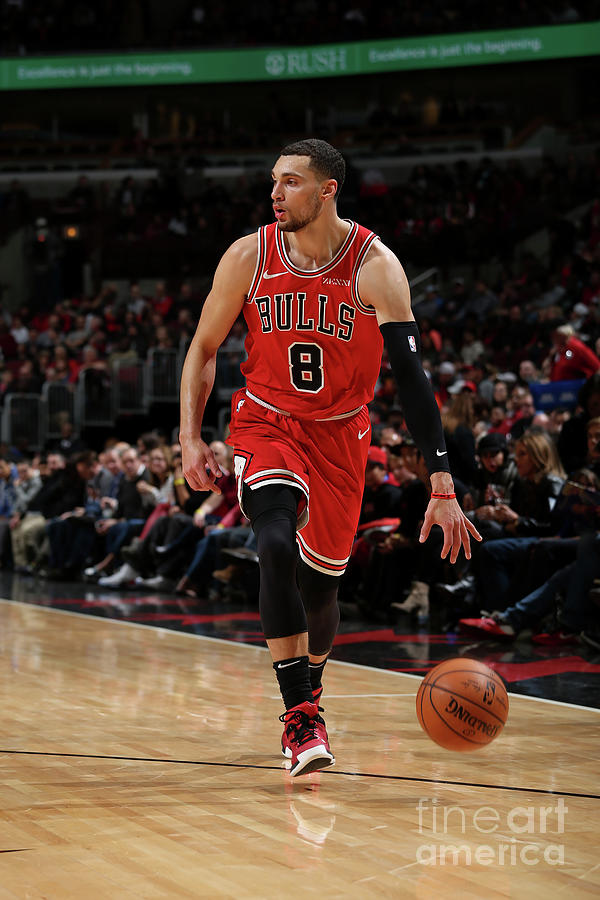 Zach Lavine Photograph by Gary Dineen
