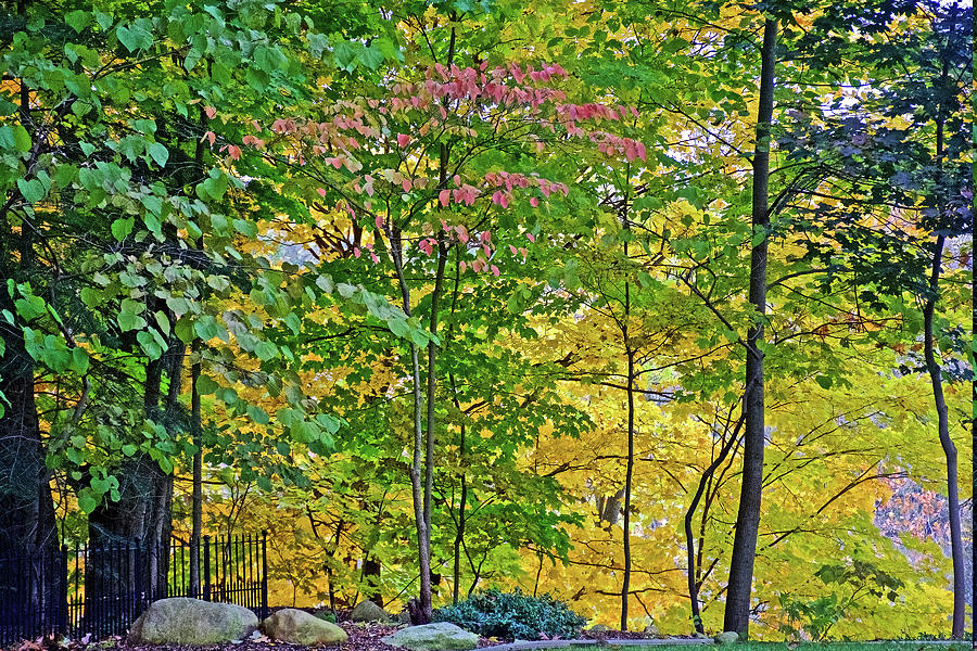 65 Autumn in Thornapple River Area in Grand Rapids, Michigan  by Ruth Hager