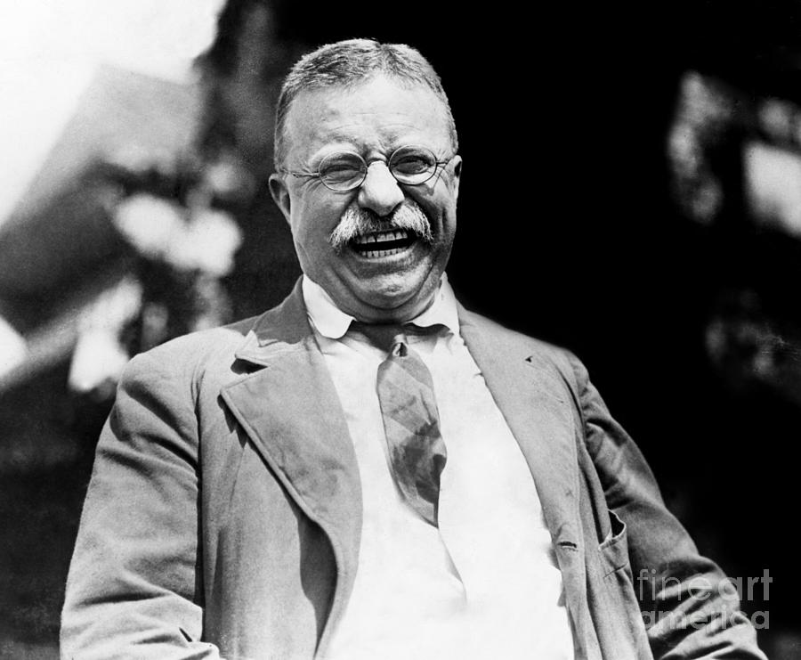 1904 Photograph - Theodore Roosevelt, C1904 by Granger