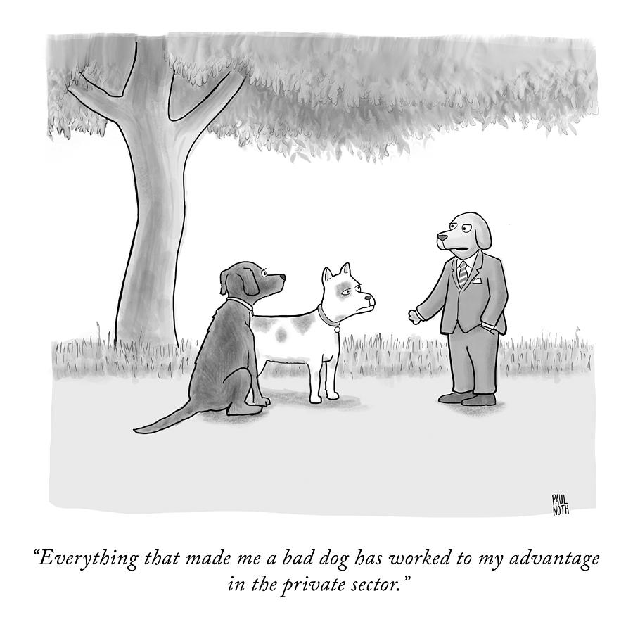 A Bad Dog Drawing by Paul Noth