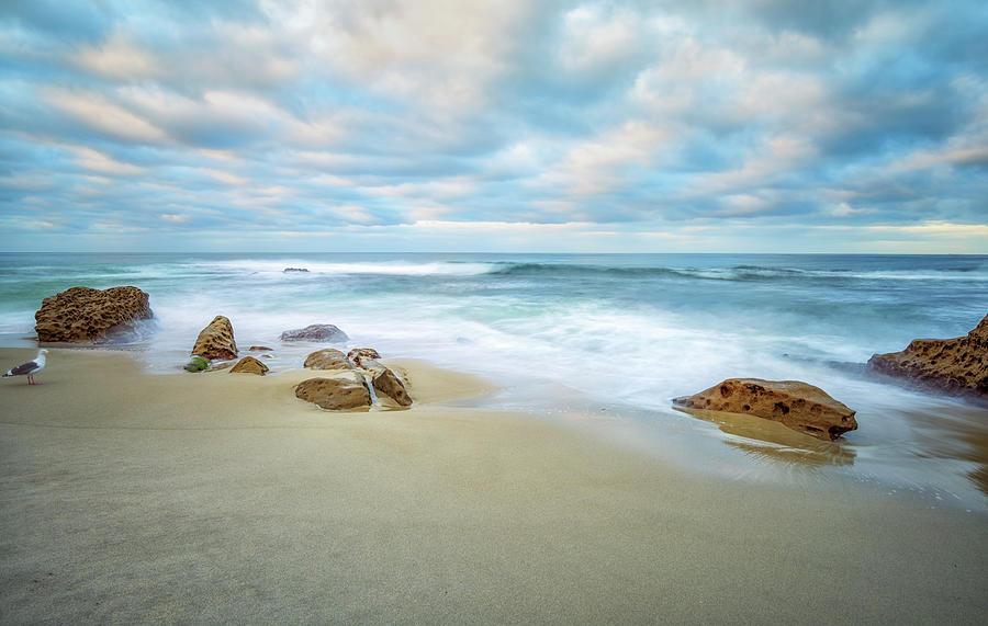 Sunrise Photograph - A Bird And A Beach by Joseph S Giacalone