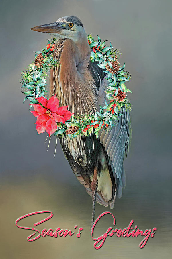 Christmas Wreath Photograph - A Blue Heron Christmas Greeting by HH Photography of Florida