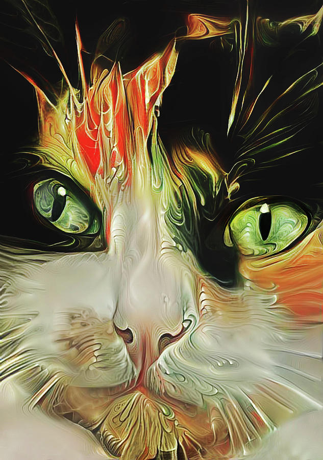 A Calico Cat Named Shadow by Peggy Collins