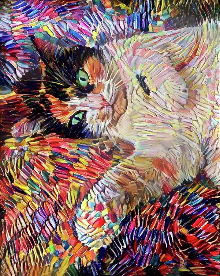 A Colorful Calico Cat Named Shadow by Peggy Collins