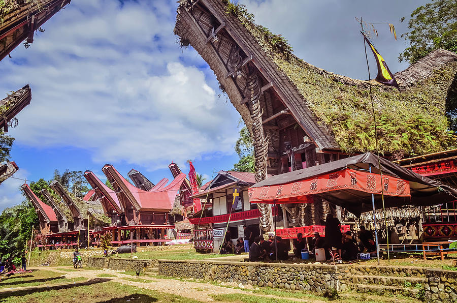 A Complex of Traditional Toraja Houses by Yermia Riezky Santiago
