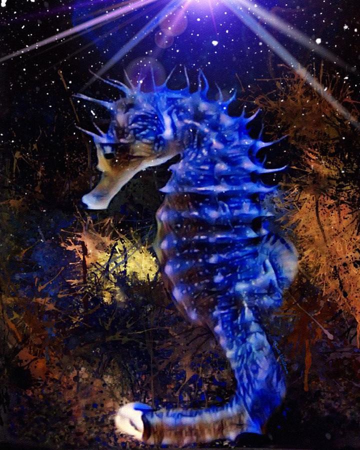 Wildlife Digital Art - A Dark Blue Seahorse Portrait  by Scott Wallace Digital Designs