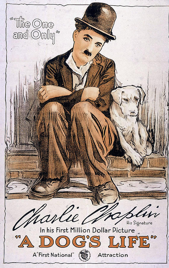 a Dogs Life Poster 1918 Mixed Media