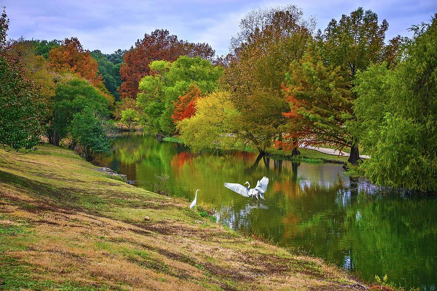 A Fabulous Fall Along Cibolo Creek by Lynn Bauer