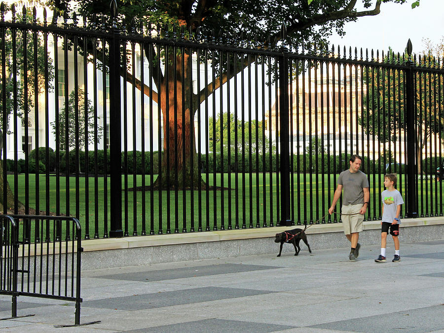 A Father And Son Walking Their Dog Past The White House Photograph