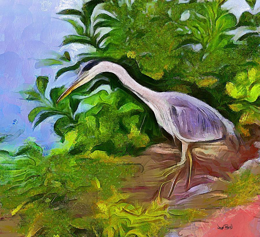 A Feathered Friend by Wayne Pascall